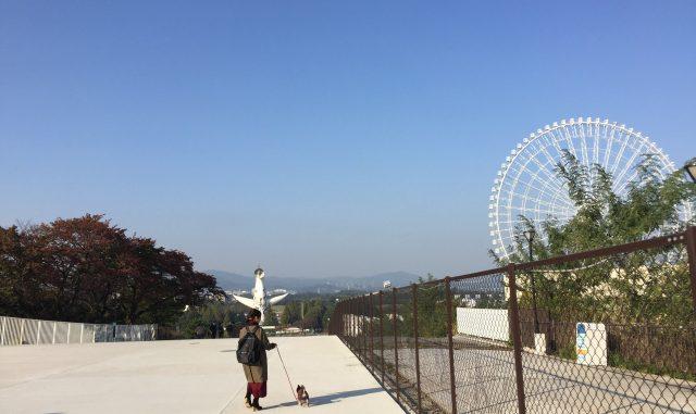 (吹田市)太陽の塔-万博公園