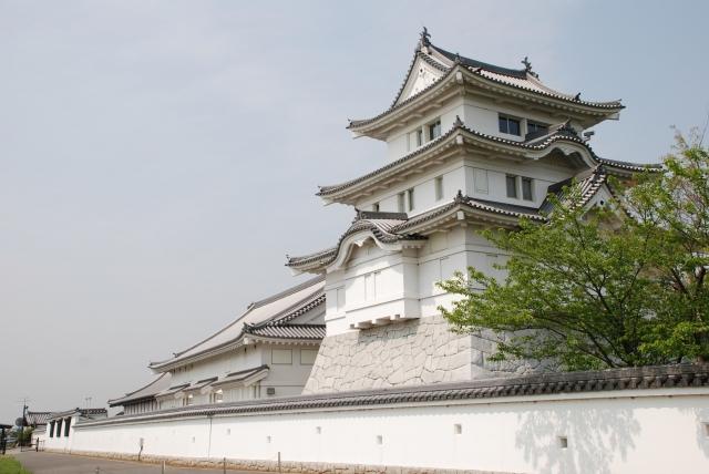 (野田市-千葉県立関宿城博物館)関宿城