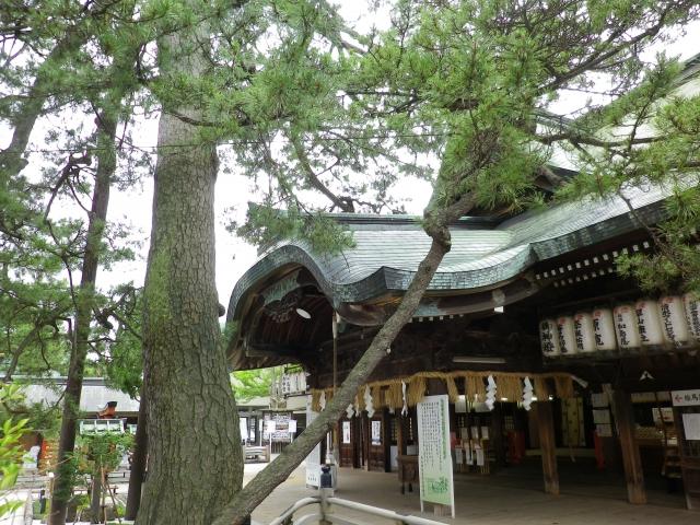 新潟-白山神社④
