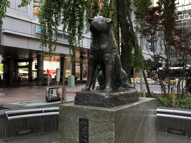 渋谷-ハチ公