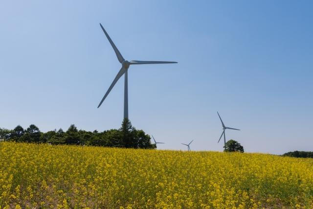 郡山-布引高原の風車と菜の花