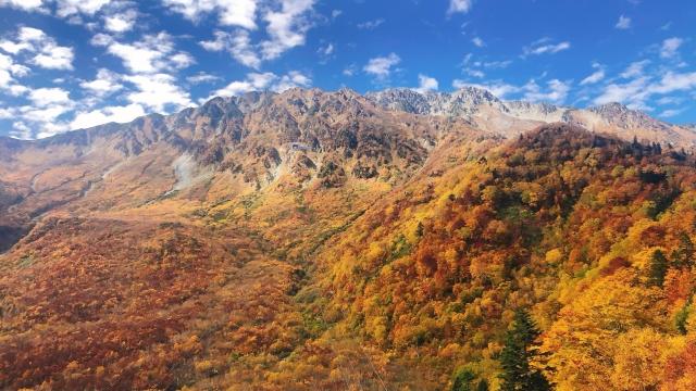 立山町-秋の立山大観峰