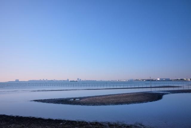 船橋-千葉県の三番瀬干潟